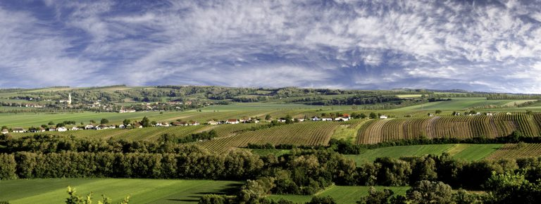Panoramafoto Zellerndorf Kellergasse
