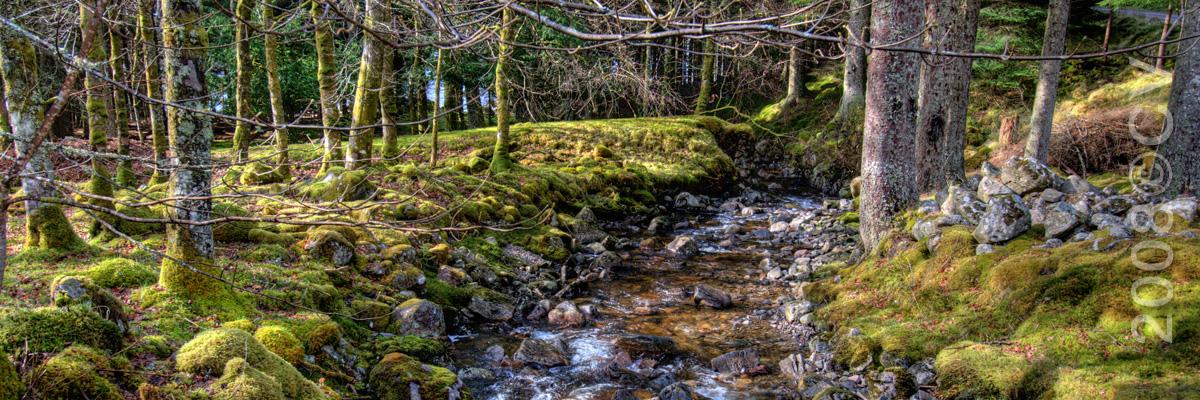 schottland_highlands_3